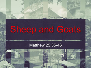 Sermon - Sheep and Goats