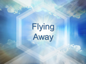 Sermon - Flying Away